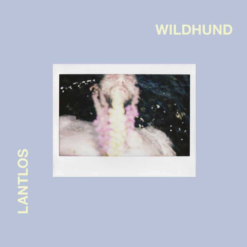 Lantlôs - Wildhund Book 2-CD